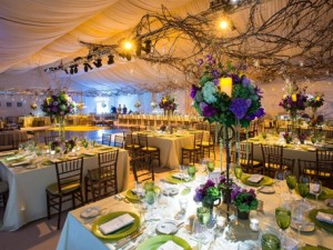 Fabulous Custom Tent Rentals In New Jersey Almar Party Tent Rentals Home Interior And Landscaping Fragforummapetitesourisinfo